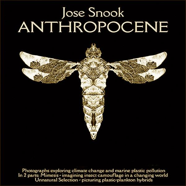 Anthropocene June 2020