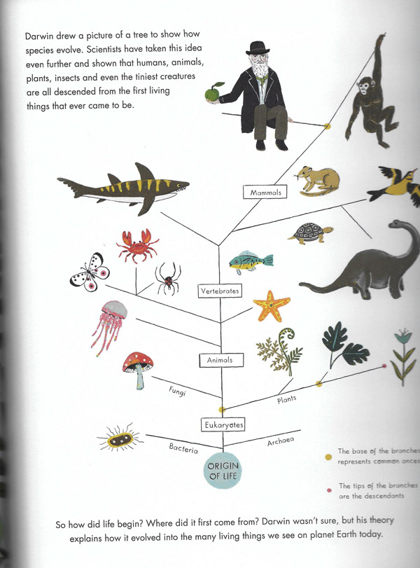 Charles Darwin 2 for web 1