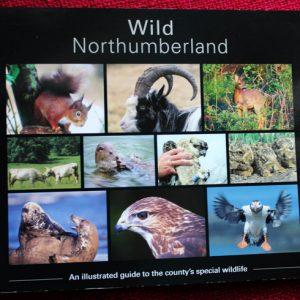 Wild northumberland